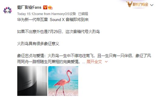 Huawei Sound X Flamingo codename