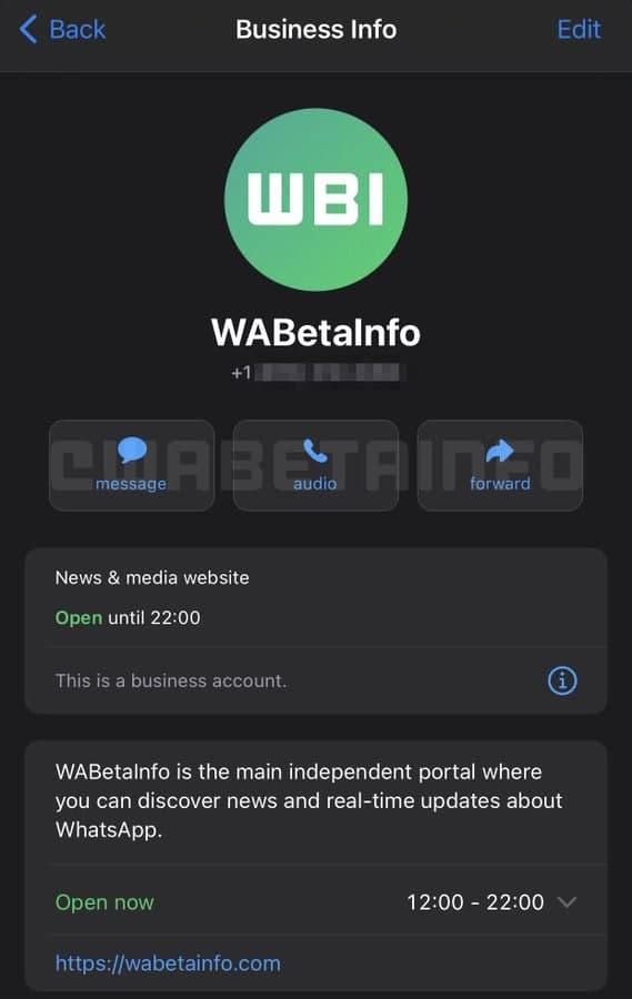 WhatsApp business info iOS