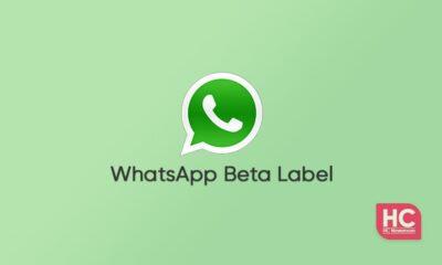 WhatsApp Beta Label